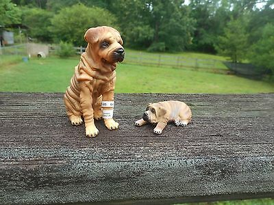 Shar Pei Adult and Puppy by CollectA;/Charpei/Sharpei/toy/ dog