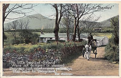 sa irish life postcard ireland horse