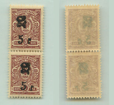 Armenia, 1920, SC 136, mint, black Type F or G, vertical  pair. e9421