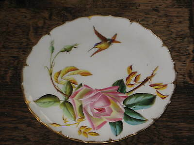 Pretty 19Th C Probably George Jones Plate Aesthetic Design Raised Painted Bird +