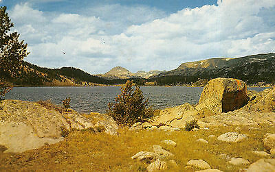 Vintage Chrome Standard Postcard Yellowstone National Park Island Lake Outlet