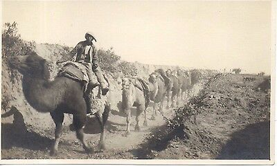 Rare Mongol Types, Mongolian Caravan, China photo. C1920. Hartungs Photo, Peking