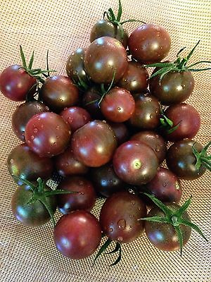 Tomato Chocolate Cherry 100  Certified Organic Seeds