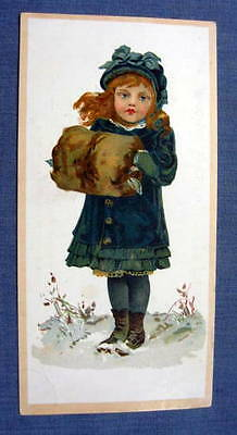 Lion Sarica Coffee Trade Cards Woolson Spice Toledo OH 1880