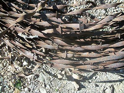 Vintage Brinkerhoff Flat Ribbon Barb Wire Western Fencing Antique Crafts Wreaths