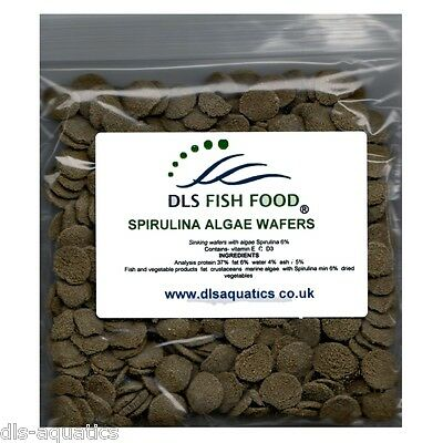 DLS Fish Food Spirulina Algae Wafers Catfish Pleco Plec 50g 100g 200g 1kg