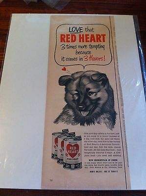 Vintage 1952 Red Heart Dog Food Chow Chow Dog Print ad