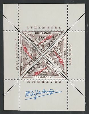 1962 LUXEMBOURG rocket mail sheet - triangle - EZ 6A1 - de Bruijn
