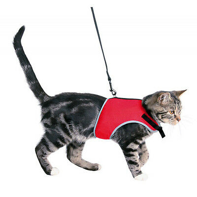 Trixie Soft Harness with Leash for Cats Medium
