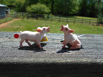 TWO PIGLETS by Safari Ltd/toy/pig/pigs/ADORABLE!!