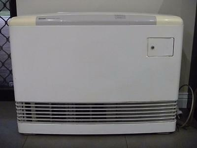 RINNAI  556 FDT NATURAL Gas Heater Great Condition