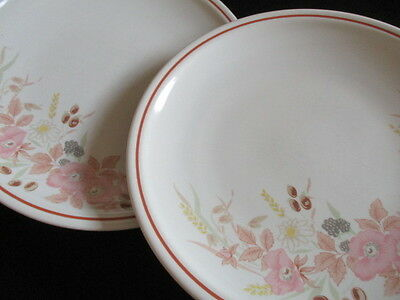 Boots Hedge Rose 2 x Dinner plates