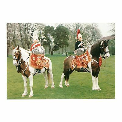 DRUM HORSES OF THE LIFE GUARDS and BLUES & ROYALS MOUNTED REVIEW ORDER POSTCARD