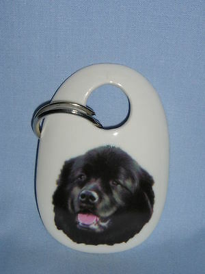 Newfoundland Dog Key Chain Porcelain Fired Decal
