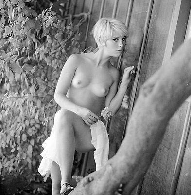 Ron Vogel Negative, beautiful nude blonde pin-up girl Chrissie Mathis, t51764