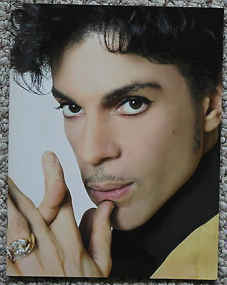 Prince Musicology Tourbook Program  Full Color  Near Mint Condition!  2004