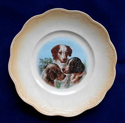 Pottery Plate 3 Hunting Dogs Brittany Spaniel German Shorthaired Pointer c1917