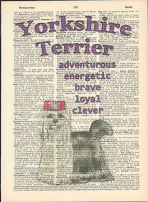 Yorkshire Terrier Dog Traits Altered Art Print Upcycled Vintage Dictionary Page