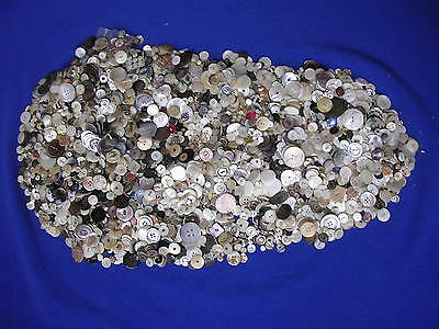 Vintage Antique Lot of 12 LBS Mother Of Pearl Shell Fashion Buttons 1800-1900's