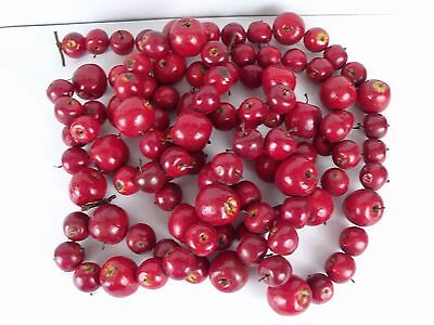 Red Apple Christmas Garland Holiday Decoration Decor 12' Long