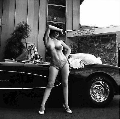 60s Sabine Demois standing with Corvette very large breasts  8 x 8 Photograph
