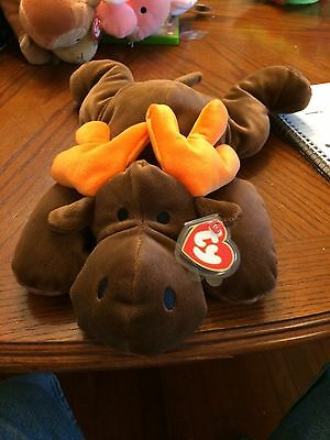 Antlers The Brown Moose Beanie Baby Pillow Pal!  New, Never Displayed! Nice!