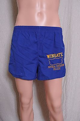 VTG '70s Champion blue bar Wingate College Physical Education shorts M
