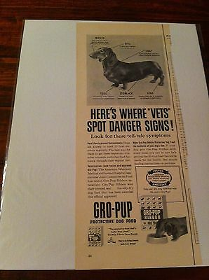 Vintage 1953 Gro Pup Dog Food Where Vets Spot Danger Signs Dachshund Dog ad