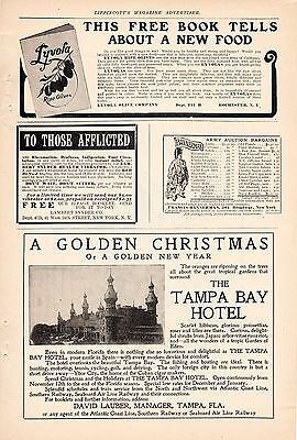 1906 Tampa Bay Hotel Ad-A Golden Christmas