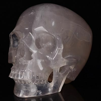 "6.85"" Natural Smoky Quartz CrystalHand Carved Skull/Head,Reiki Healing#20S94"