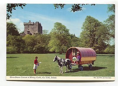 Horse-Drawn Caravan at Blarney Castle, Co Cork - John Hinde modern-size postcard