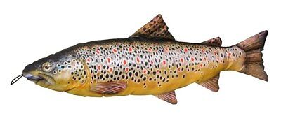 Brown Trout Fish Cushion Pillow Fish Cuddly Toy Similar to The Apprentice 65cm