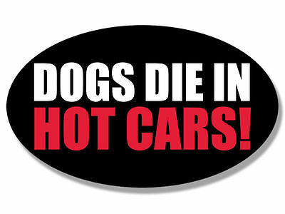 "5"" dogs die in hot cars safety bumper sticker decal"