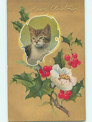 Pre-Linen christmas CUTE KITTEN CAT WITH HOLLY AND FLOWER HQ6847