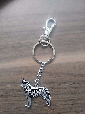 Husky Legend key ring dog collectible silver gold double single with box or not