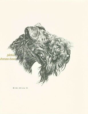 #121 KERRY BLUE TERRIER  dog art print * Pen and ink drawing * Jan Jellins