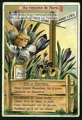 Purple Crocus Flower Girl And Bee 1910 Art Nouveau Trade Ad  Card