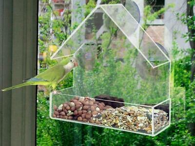 Window Bird Feeder Hotel Clear Acrylic Viewing Table Seed Peanut Hanging Suction