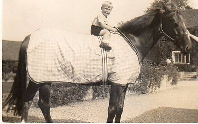 VINTAGE postcard of SMALL BOY SITTING ON A HORSE