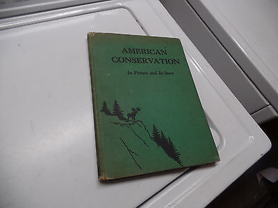1935 Vintage American Forestry Book American Conservation in Picture in Story