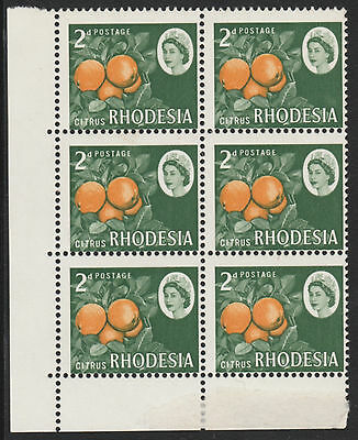 Rhodesia 4619 - 1966 ORANGES 2d block of 6 with PERF SHIFT unmounted mint