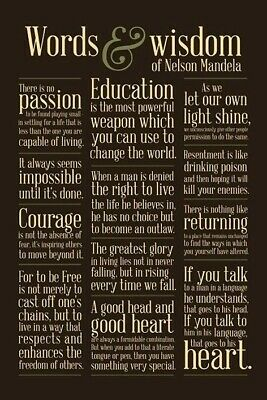 NELSON MANDELA ~ WORDS & WISDOM QUOTES ~ 24x36 POSTER Courage Education Freedom