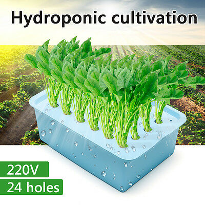 9/24 Holes Indoor Aerobic Soilless Cultivation Plant Site Hydroponic System Kit