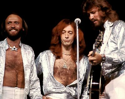"Bee Gees 10"" x 8"" Photograph no 42"