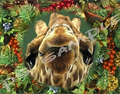 GIRAFFE IN WREATH - Flexible Fridge Magnet