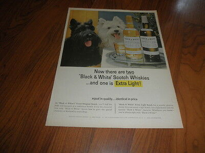 SCOTTISH TERRIERS Original AD _ BLACK& WHITE SCOTCH 1964