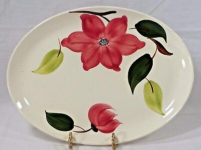 Southern Potteries Rio Stetson Handpainted Meadow Rose Meat Platter Chop Plate