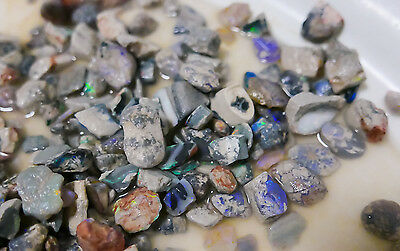 Black Opal Rough 1oz potch & colour lots, lapidary, practice cutting, cabbing