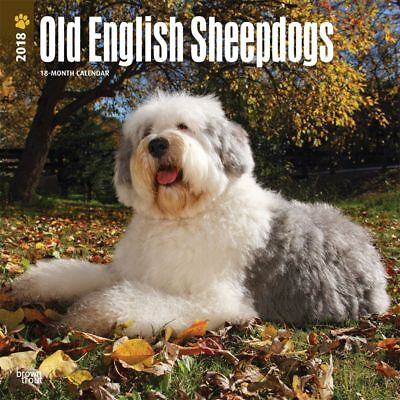 2018 Old English Sheepdogs Wall Calendar,  Old English Sheepdogs by BrownTrout