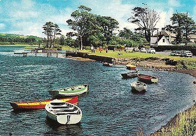 wa irish postcard ireland sligo doorly park sligo town